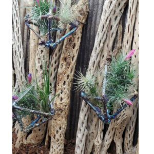 Bizmuth Coated Geometric Air Plant Holder