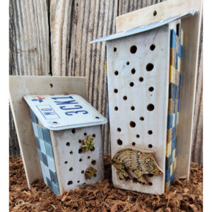 Native Bee Houses